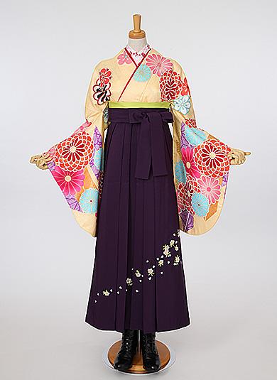 袴Style 4 菊